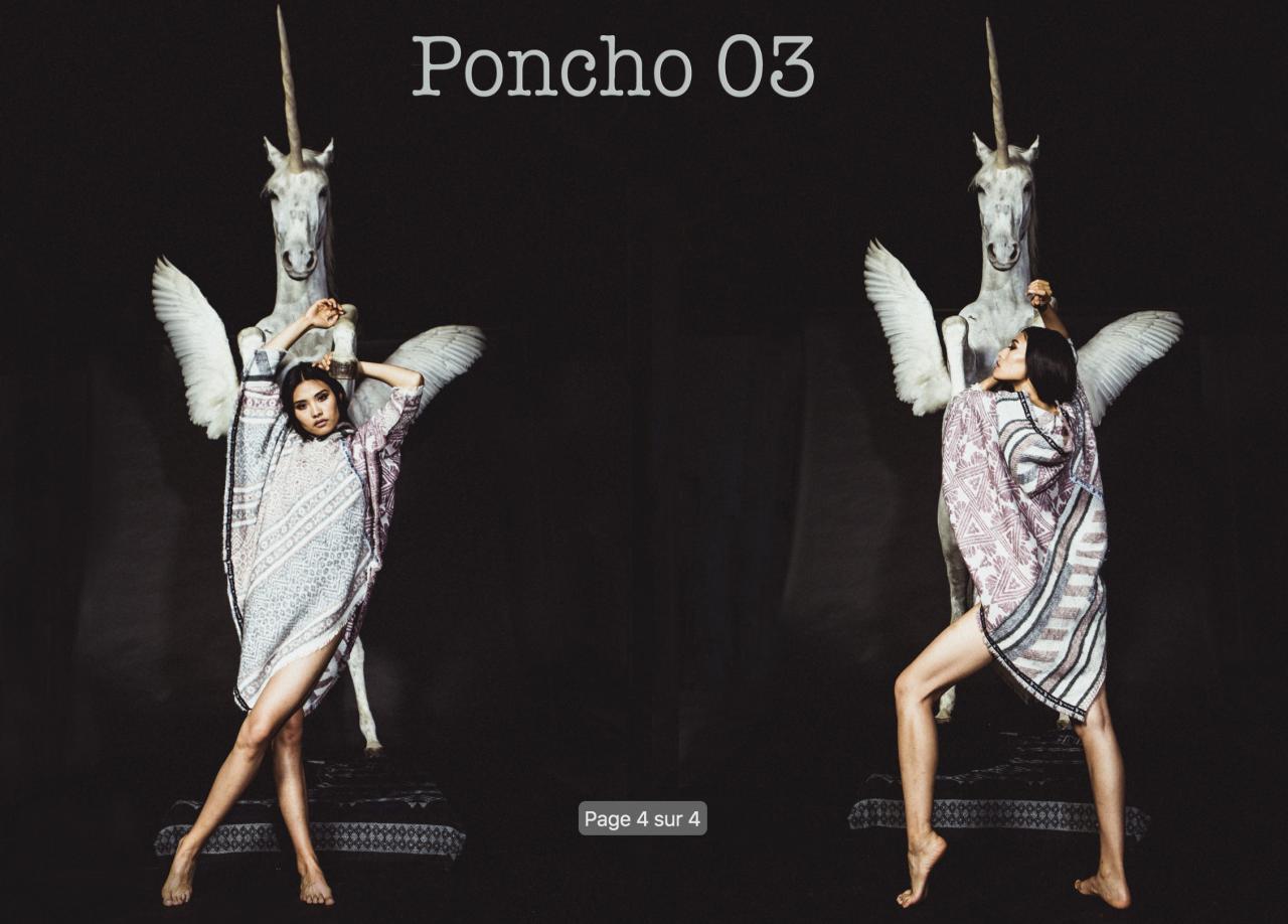 Poncho FOU DE LOU